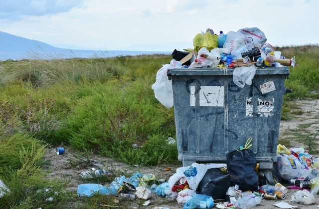 Los recursos de software respaldan la gestión de residuos a través de datos y mejores prácticas