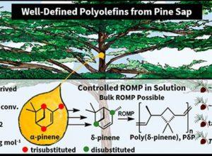 Plástico a base de savia de pino: un cambio potencial para el futuro de los materiales sostenibles